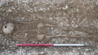 Remains found near West Knoyle in Wiltshire