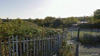 Farm Terrace allotments