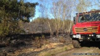 The heathland fire at Moors Valley Country Park