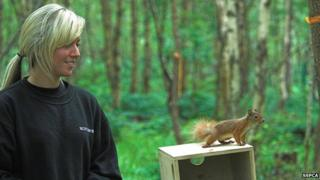 Squirrel released