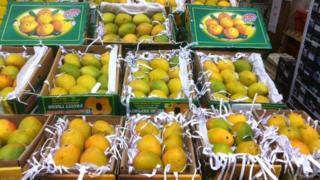 Boxes of mangoes