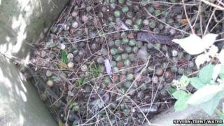 Tennis balls blocking a sewer in Melton Mowbray sewer
