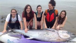 Five girls with bluefin tuna