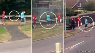 Man swinging a dog from its lead while walking in Stevenage