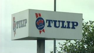 Tulip Ltd sign
