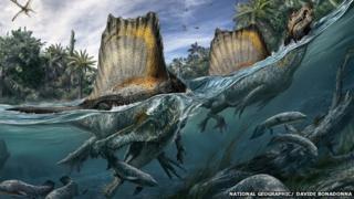 Artist's impression of Spinosaurus