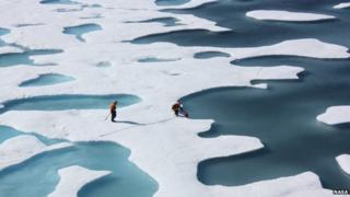 Melt ponds on Arctic floes