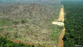 Para State, Brazil deforestation 2004