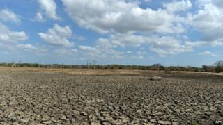 A dried up irrigation reservoir in the Yala national park in Sri Lanka - 11 September 2014