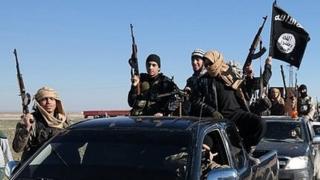 Islamic State militants (file photo)
