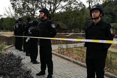 В зоопарке Китая тигр загрыз упавшего в клетку мужчину