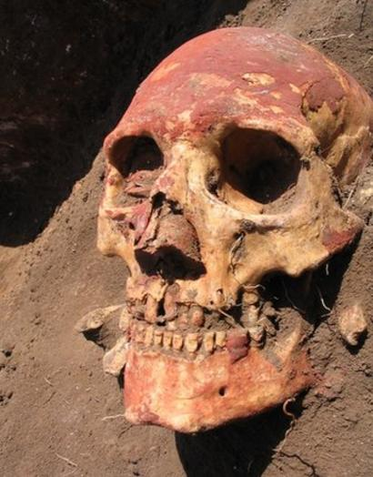 The Yamnaya people had an important impact on the genetics of northern and central Europe