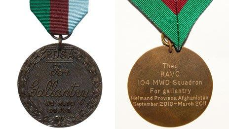 The PDSA Dickin Medal awarded to Theo