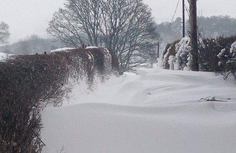 Snow on farm