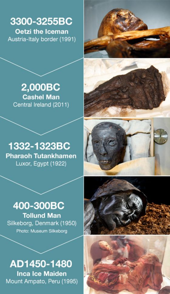 HELP WITH ANCIENT HISTORY TOLLUND MAN ESSAY?