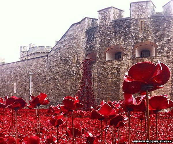Blood Swept Lands and Seas of Red poppy installation.