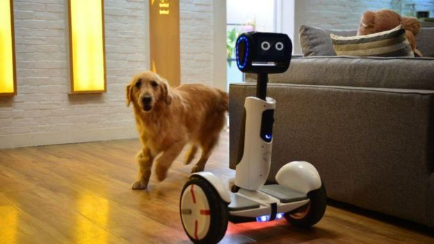 Segway robot and dog