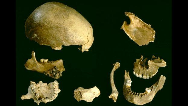 На останках, найденных в пещере Гофа, были обнаружены следы употребления в пищу