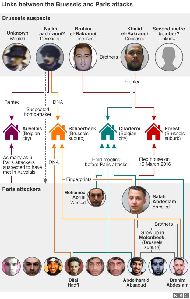 Connections between Paris and Brussels attacks