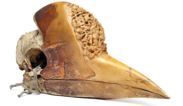 A carved hornbill casque