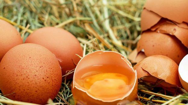 Huevos y cáscaras