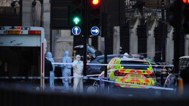 Los investigadores forenses analizaron el automóvil que se estampó contra las barandillas de la sede del Parlamento.