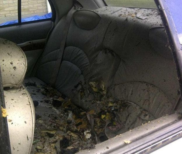 Royal Canadian Mounted Police provided an image of the backseat of the taxi where Driver detonated an explosive device.