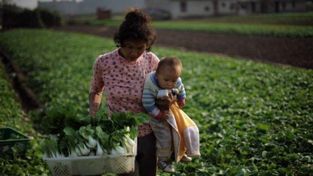 Más de 600 millones de personas en China, cerca de la mitad de la población, viven en zonas rurales.