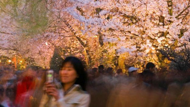 Una mujer en una foto borrosa, toma un selfie de un cerezo en Japón