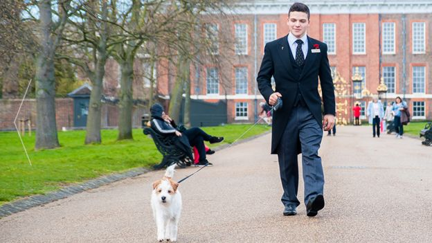 A member of staff at the Milestone Hotel walking a guest's dog