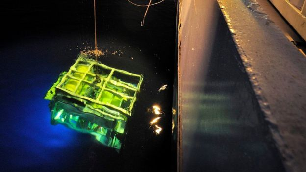 An undated handout picture provided by Deep Ocean Search Ltd (DOS) on 16 June 2016 shows a diving robot of search vessel SV John Lethbridge at an undisclosed location