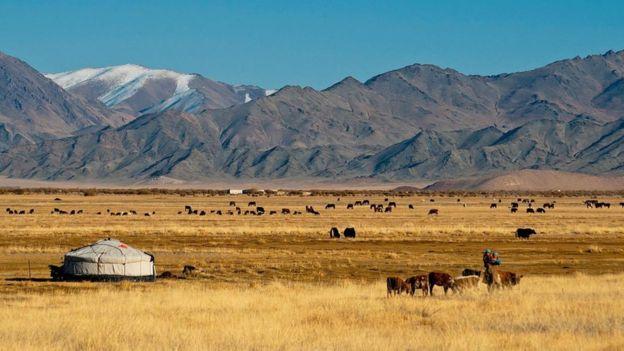 moğolistan stepte yurt ve hayvanlar