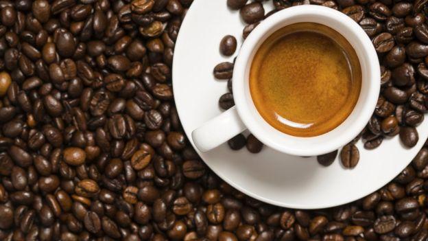 melitta mill brew memb1b 10cup coffee maker