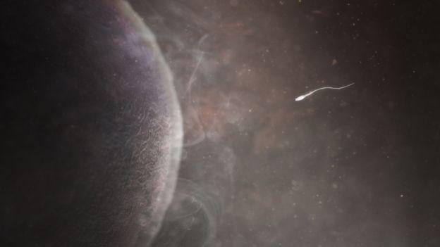 Illustration of sperm and egg