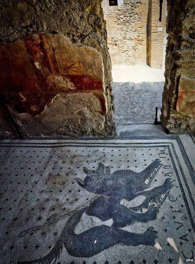 Pompeii dog mosaic