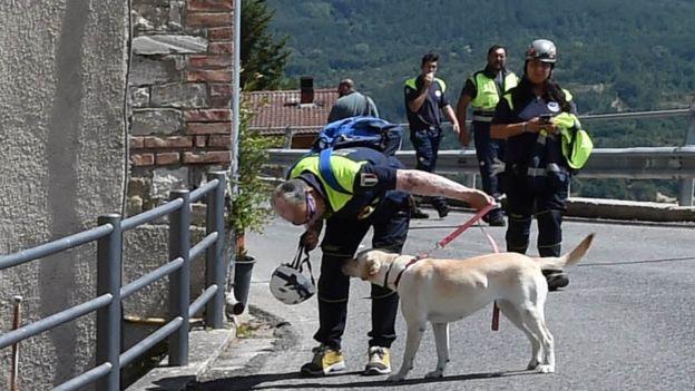 Socorristas con perros detectores en Accumoli