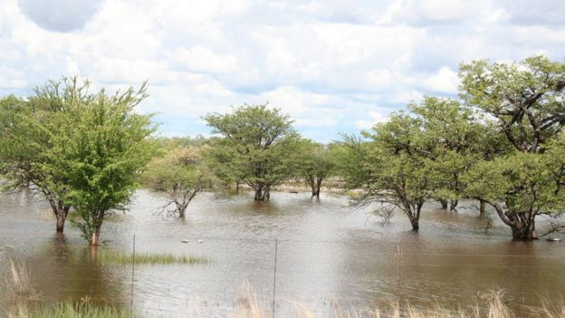 Temporada de monzones en Namibia