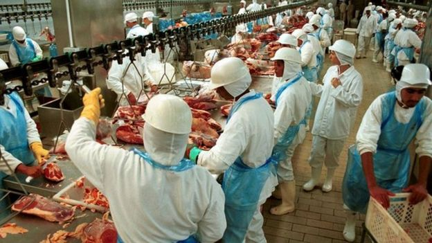 Processamento de carne