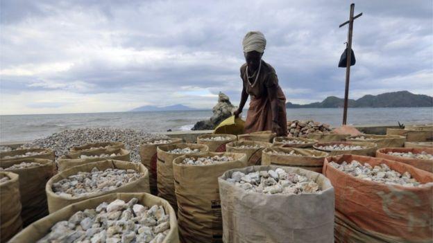 Seorang perempuan mengumpulkan batu koral di Pantai Bidau Santana, Dili, untuk dijual. Pengamat mengatakan tantangan bagi pemerintahan selanjutnya adalah bagaimana mereka mendiversifikasi sumber penghasilan non-migas, termasuk pertanian dan manufaktur.