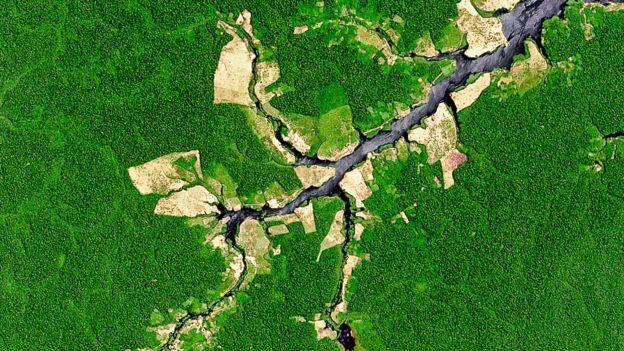 Desforestación en la Amazonía en Brasil