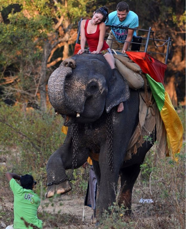 Tourists on the back of an elephant in Sri Lanka - 2014