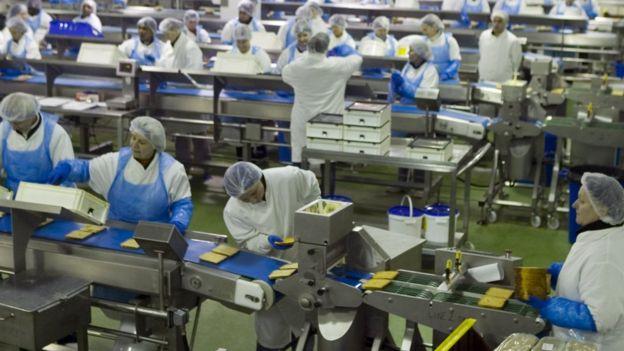 Operarios en una fábrica
