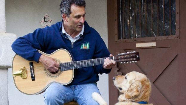 Cão vê homem tocar violão