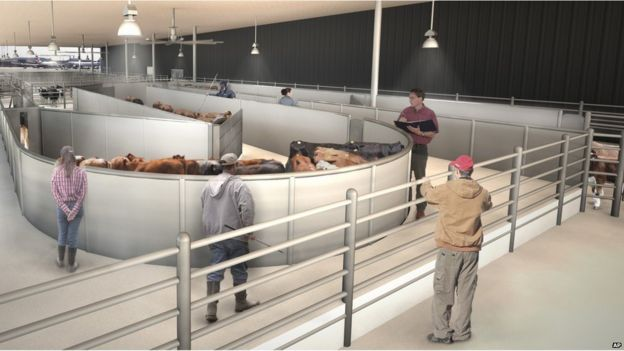 Artist drawing of The ARK Development shows a cattle handling area the new luxury terminal at New York's John F. Kennedy International Airport