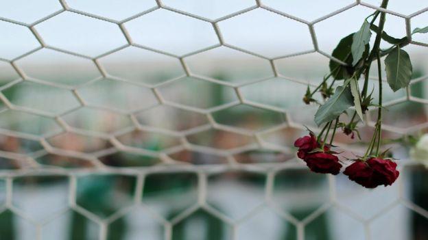 Una flor en la red de uno de los arcos en el estadio del Chapecoense