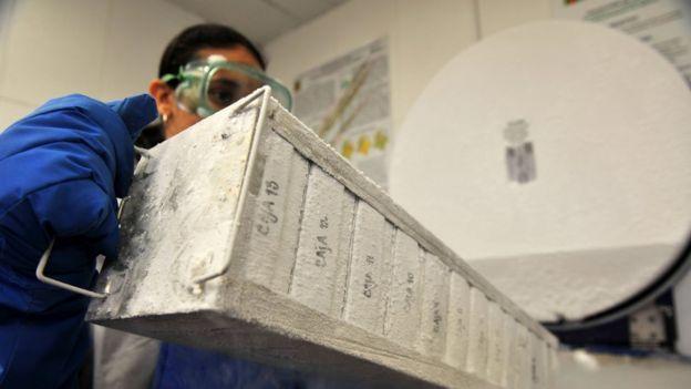 Una bióloga del Instituto Humboldt manipula un contenedor de muestras de ADN de plantas y animales de Colombia.