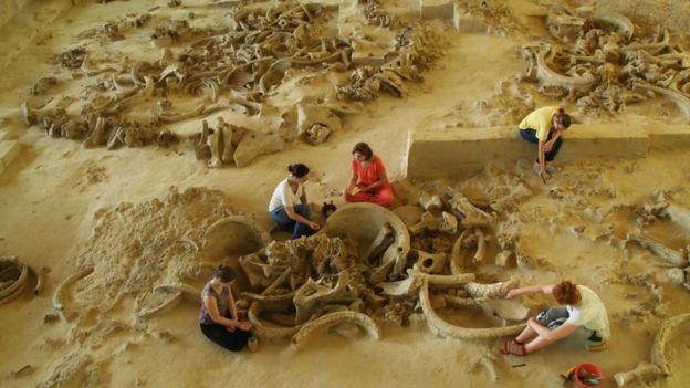 Залишки будівлі з кісток мамонта