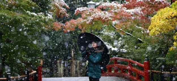A visitor takes a photo in the snow at the Tsurugaoka Hachimangu Shrine in Kamakura, near Tokyo