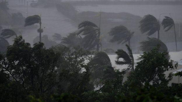 Kết quả hình ảnh cho bão debbie