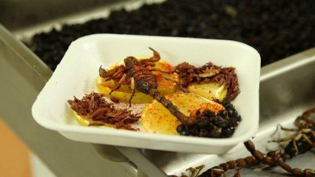 Prato com escorpião frito